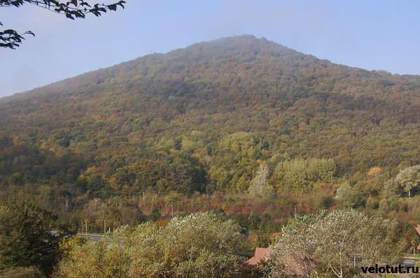 вид с горы Петушок