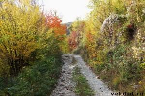Осень в Чилипси