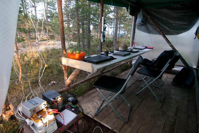 офис в лесу