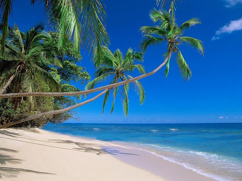 отпуск и пляж