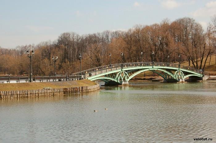 пруд Царицынский парк