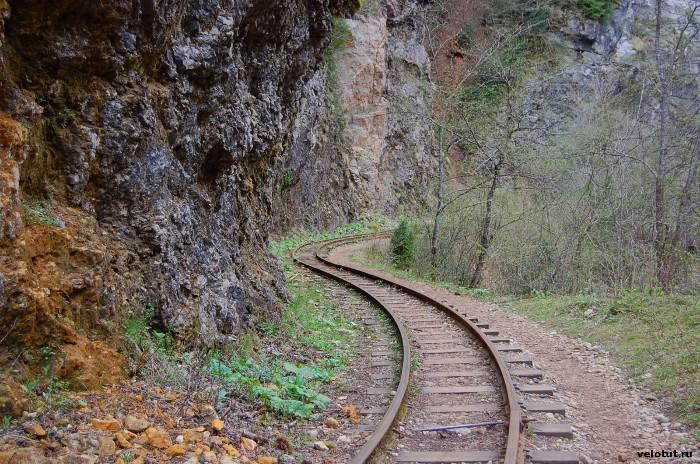 узкоколейная дорога