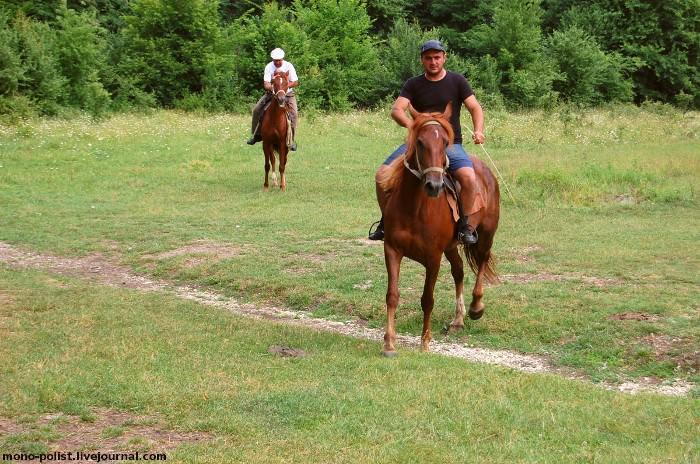 два всадника на лошадях