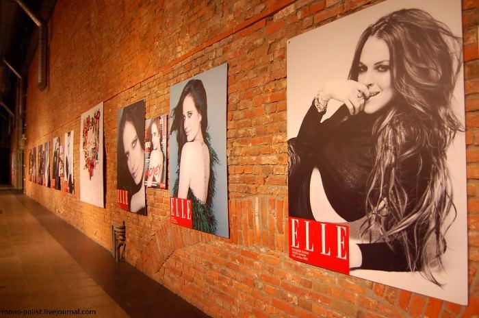 Elle фотографии девушек выставка