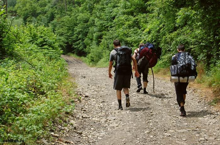 три туриста идут по дороге