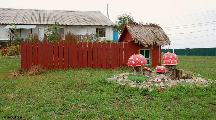 страусиное ранчо