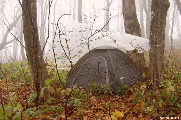 палатка в тумане