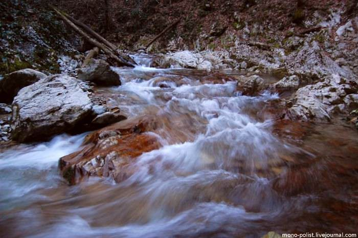 река бешенка