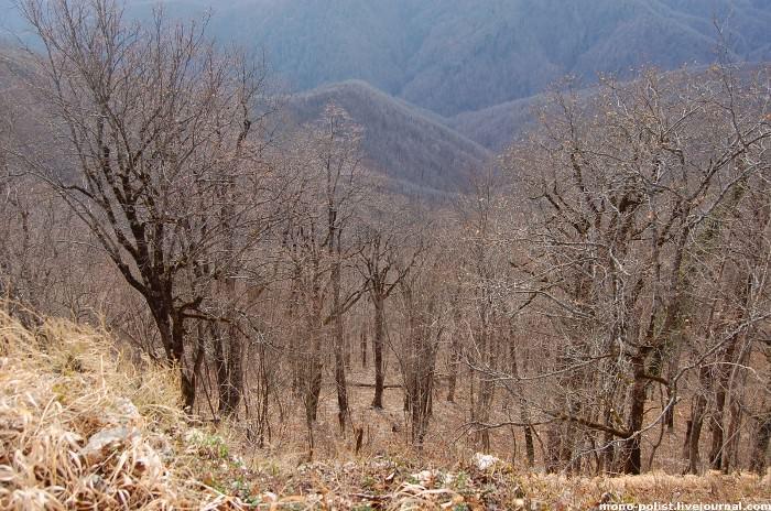 обрыв с горы