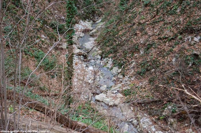 ручей в районе горы лысой