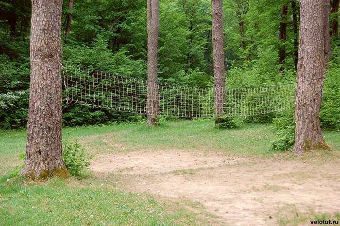 волейбольная сетка в лесу