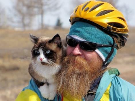 кот-велосипедист