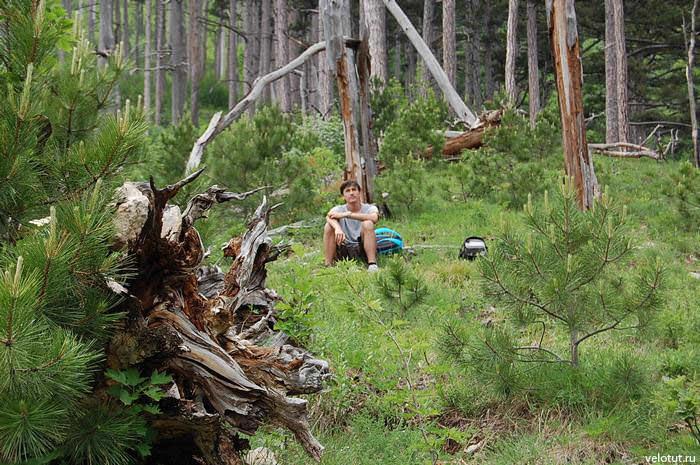 турист в лесу
