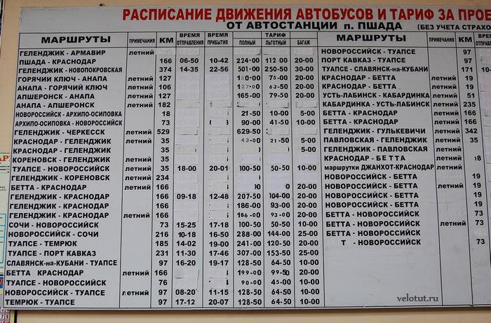 расписание автобусов пшада