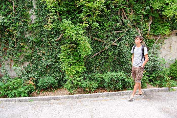 туристы в ливадии