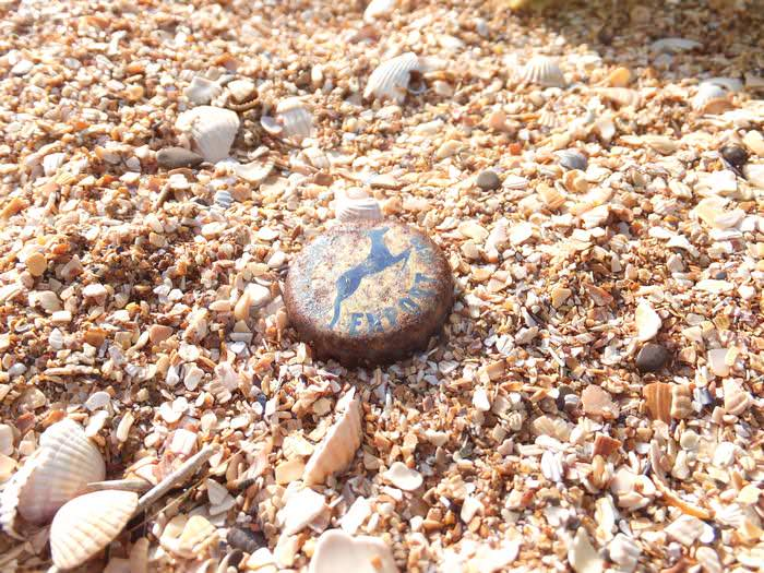 пляж из ракушки