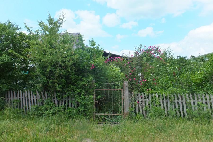 село садовое туапсинского района