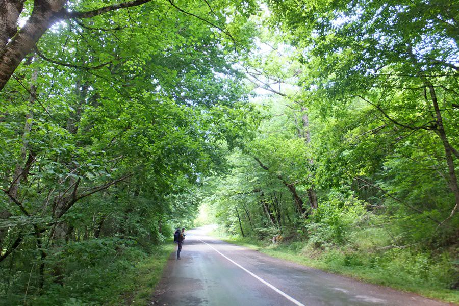 дорога на село садовое туапсинский район