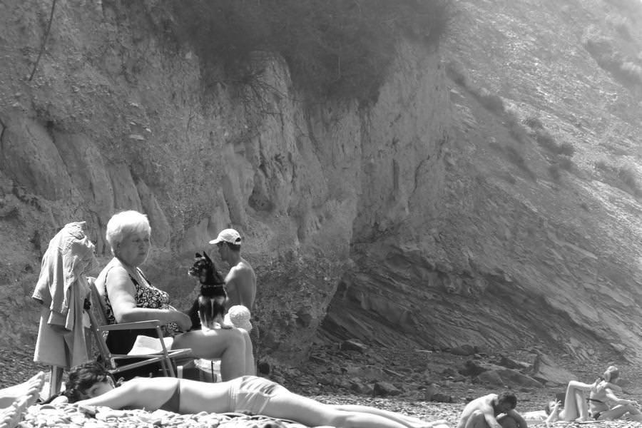 туристы на пляже с собачкой