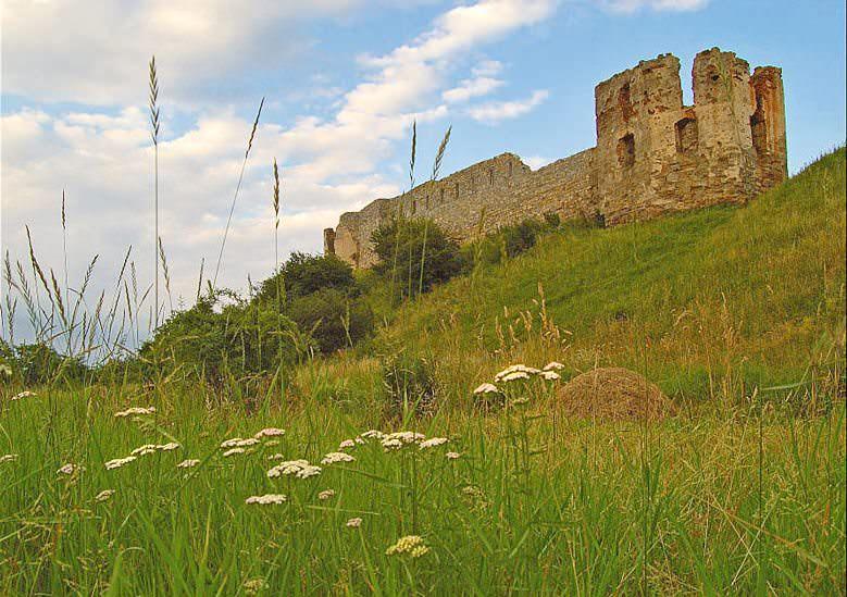 Пнивский замок
