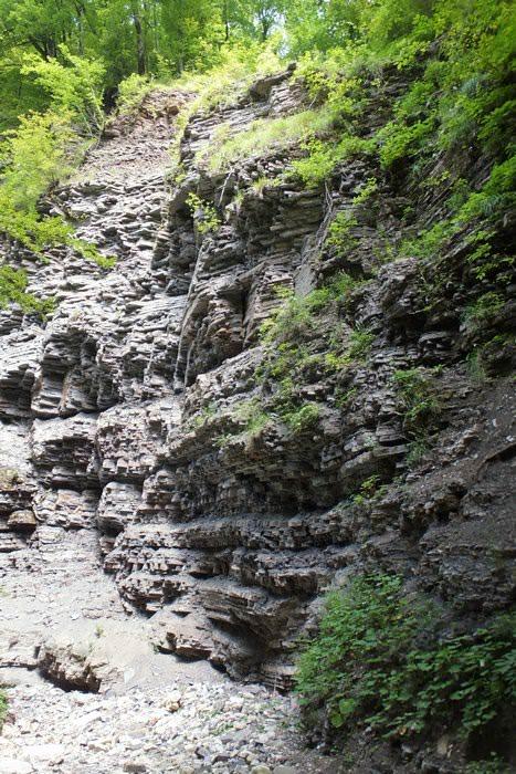 каньон наджиго
