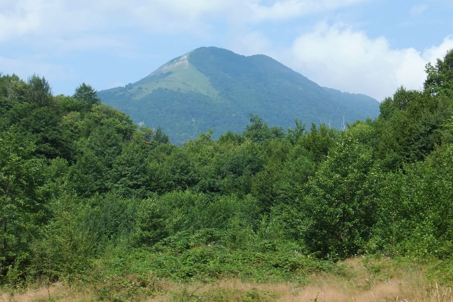 гора большое псеушхо