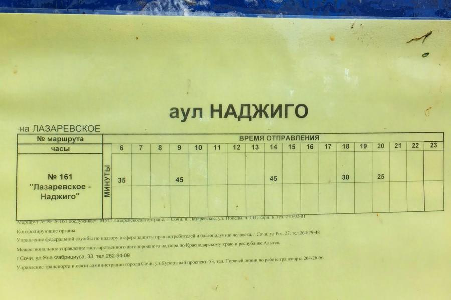 автобус наджиго лазаревское